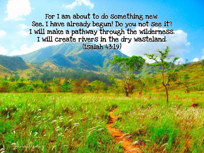 Isaiah 43:19. Nagsasa backwoods, Zambales, Philippines