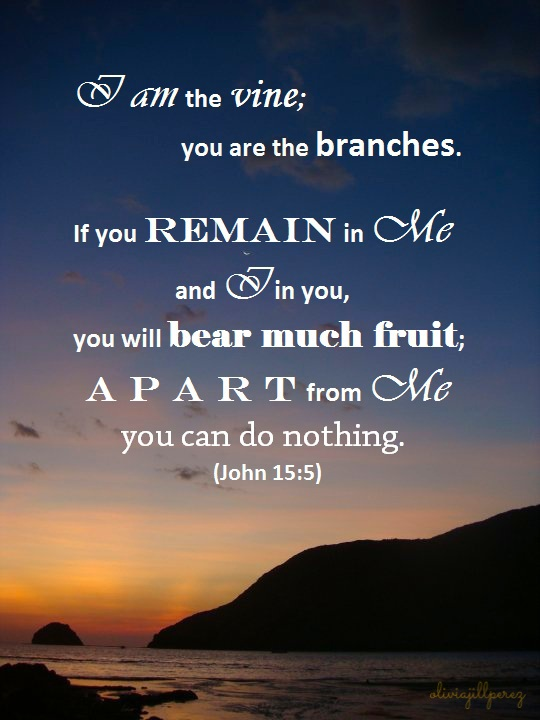 John 15.5, vine and the branches, Jesus is the vine, remain in Christ, apart from Him we can do nothing, we can do nothing, remain, abide, bear much fruit, bear fruit, sunset, anawangin, zambales, philippines, sky, sea, mountain, sun, dark blue sky, orange sun, orange sky, beach, horizon, more fun in the philippines