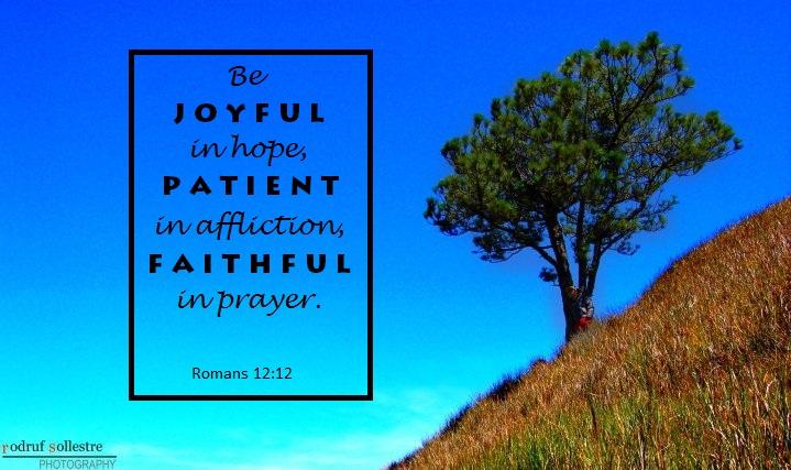 Mt. Pulag, Romans 12:12, joyful in hope, patient in affliction, faithful in prayer,