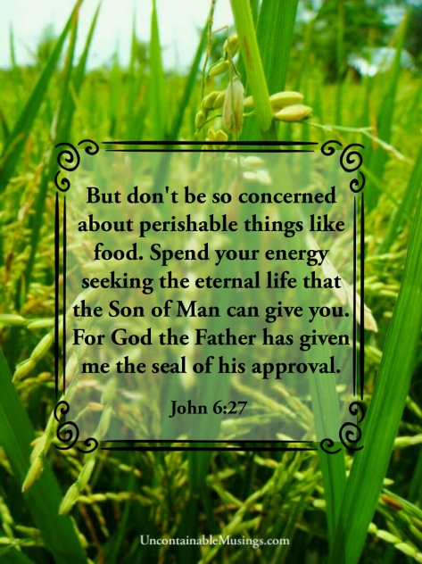 John 6:27, rice field, uncontainablemusings.com