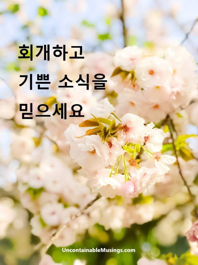 Korean Gospel, 회개하고 기쁜 소식을 믿으세요, uncontainablemusings.com